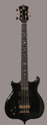 Lefty Alembic Coustom 5-string bass